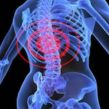 Orthopaedics / Paed. Orthopedics